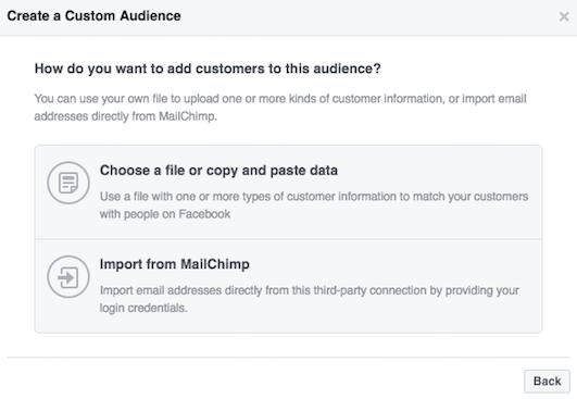 custom list custom audience