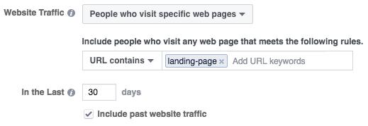 custom audience landing page