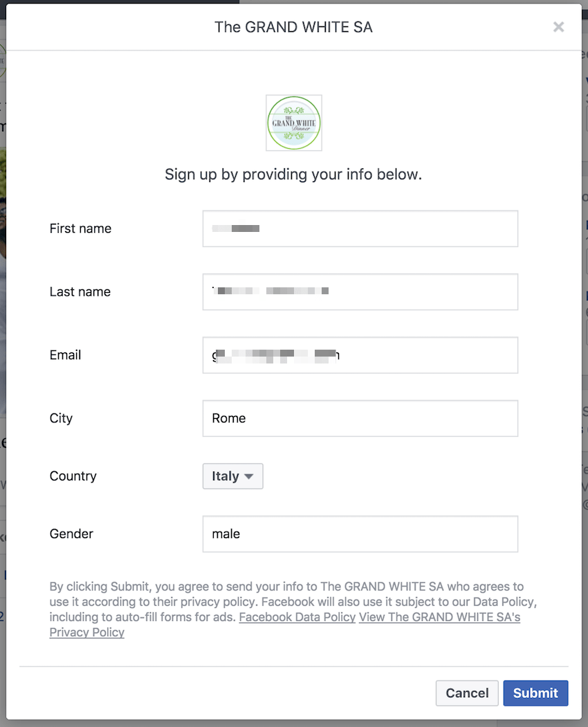 Facebook Lead Ads example form 1