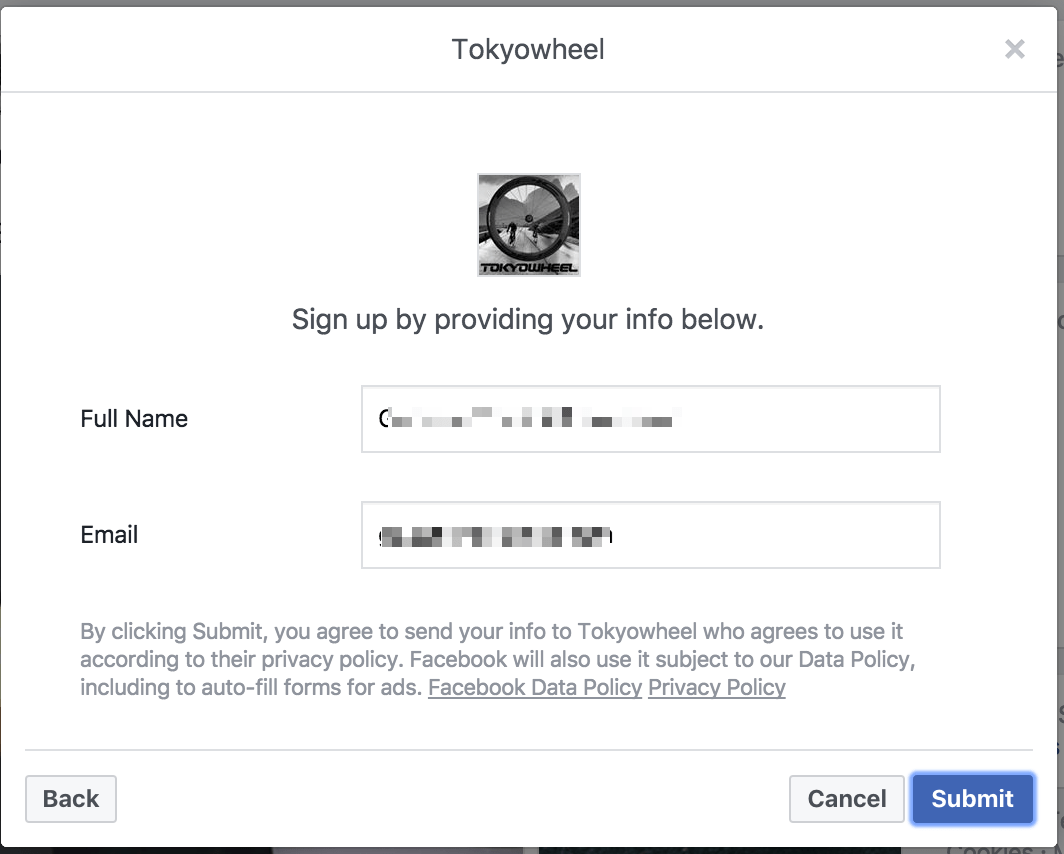 Facebook Lead Ads example form 3
