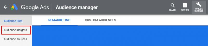 Google audience insight